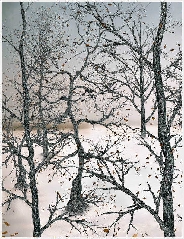 November Trees Winter Graphics. Build a lovely winter scene
