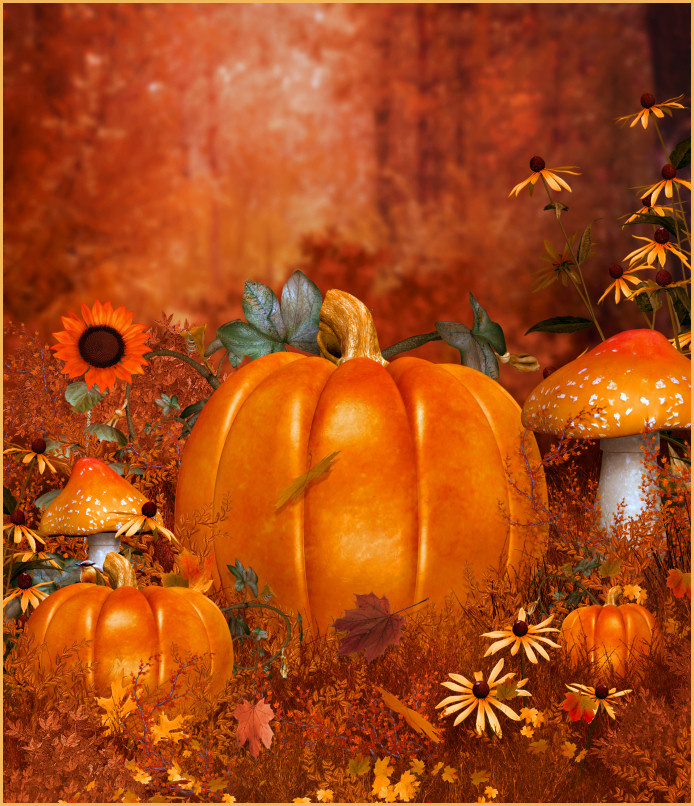 Autumn Beauty Backgrounds
