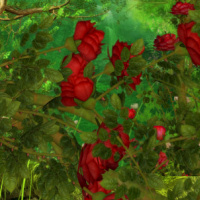 climbing rose psp tube package