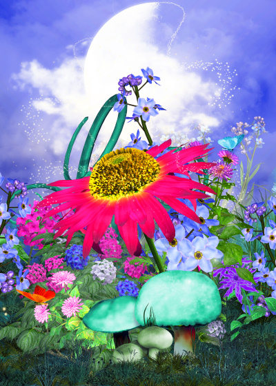 Fairy Backgrounds and Flowers