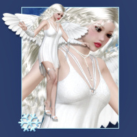 butterflywebgraphics.com Winter Angel psp tubes