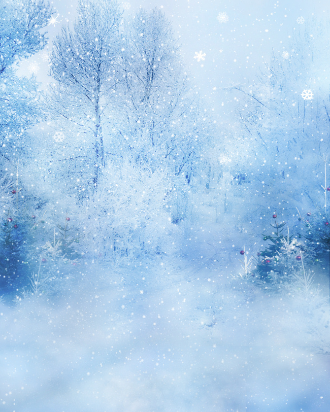 Winter Wonderland Backgrounds