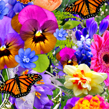 Spring Flower Garden Graphics