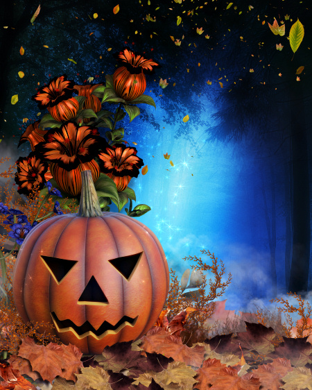 Halloween Night Backgrounds