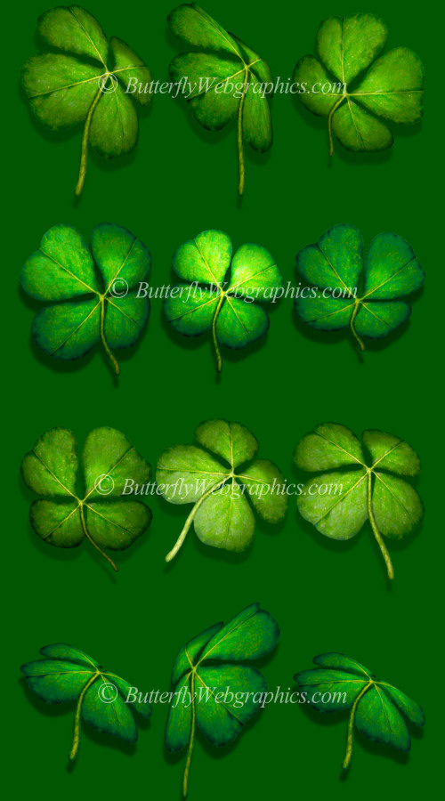 Four-leaf Clover Tubes St. Patrick's Day stock images