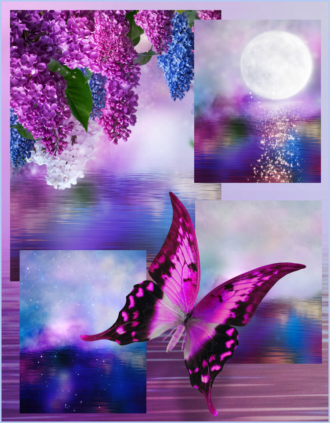 Butterfly Dreams Background Graphics