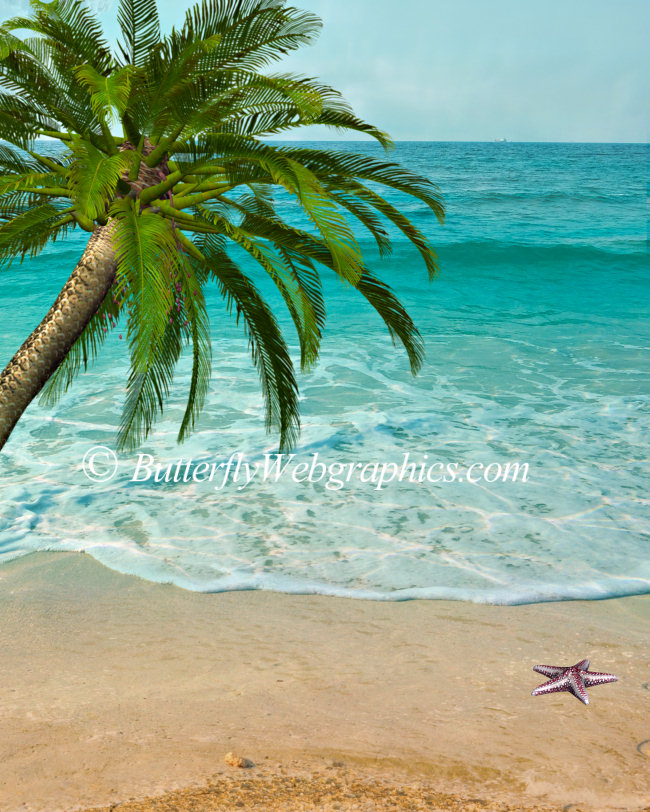 Beach Scene Graphics, including palm trees and starfish