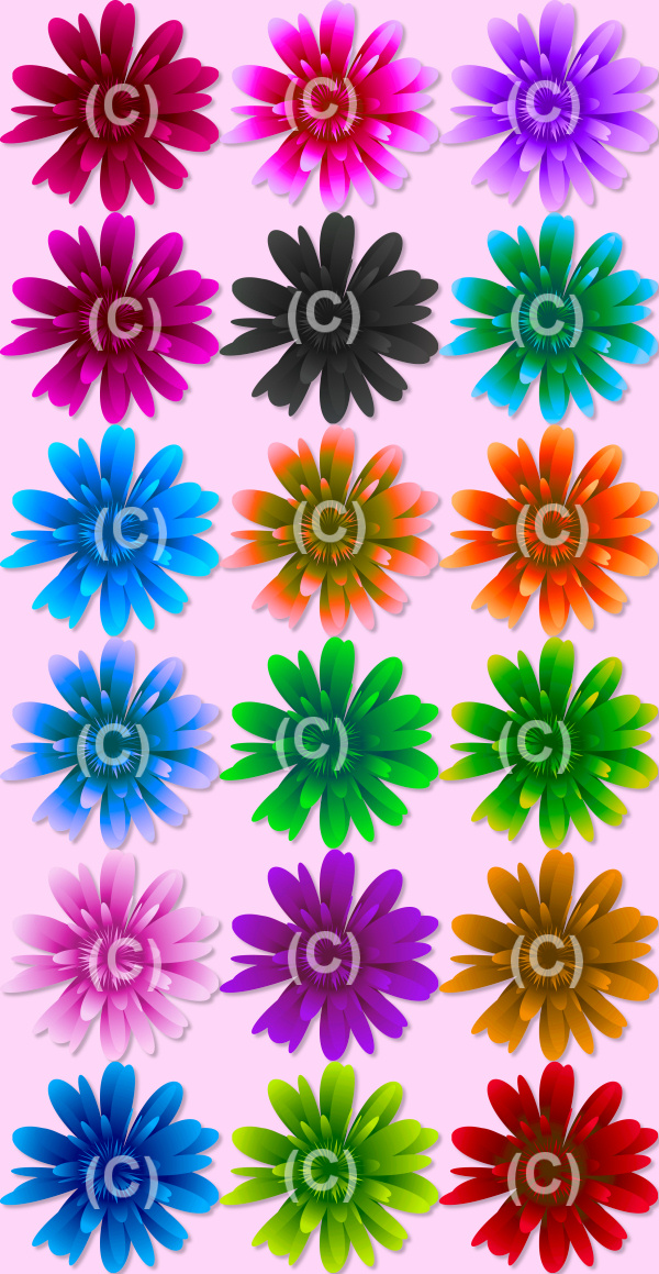 Bold Flower Graphics