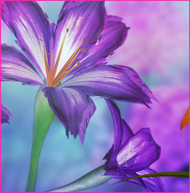 Daylily Flower Graphics
