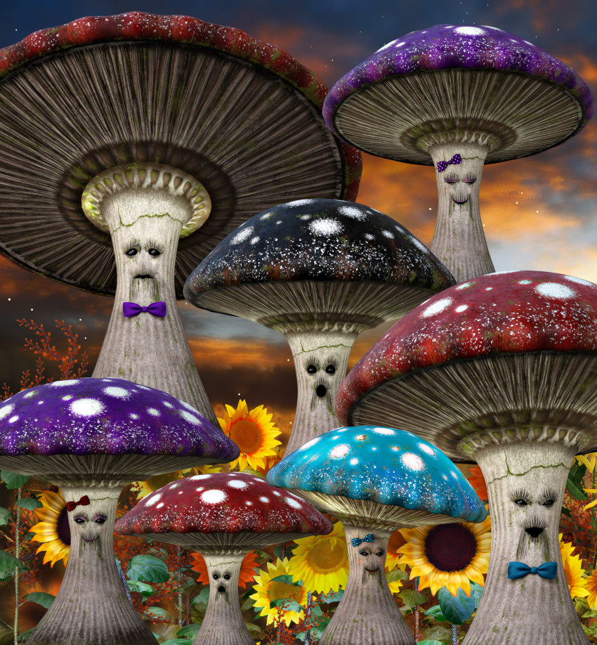 Mushroom family Graphics--cool fantasy PNGs