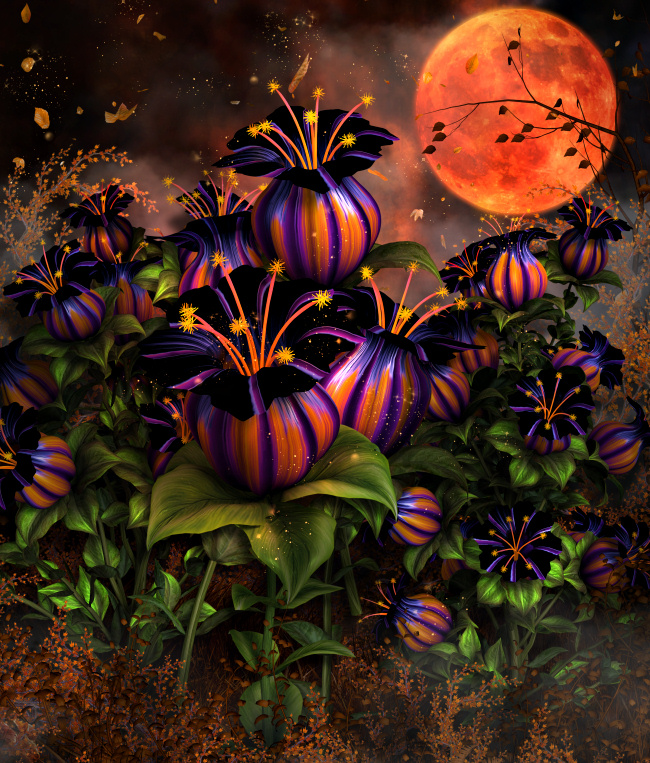 Witch Flower Graphics--Halloween stock images