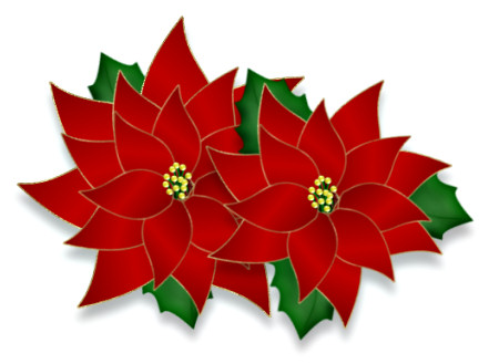 Poinsettias and Bows